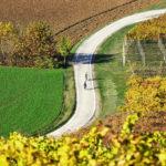 portinari autunno (1)