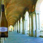 basilica_internologge_vino